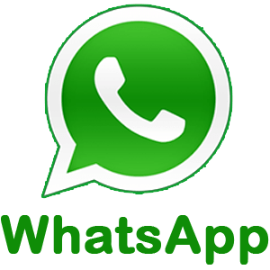 WhatsApp call